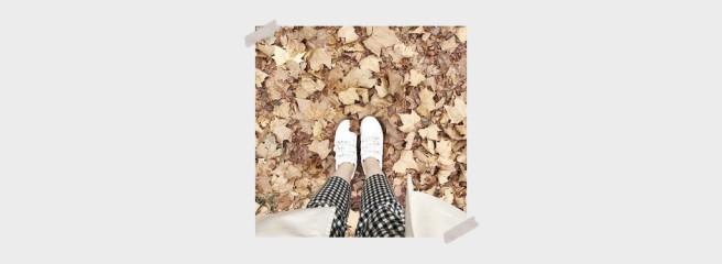 autumn-bucket-5